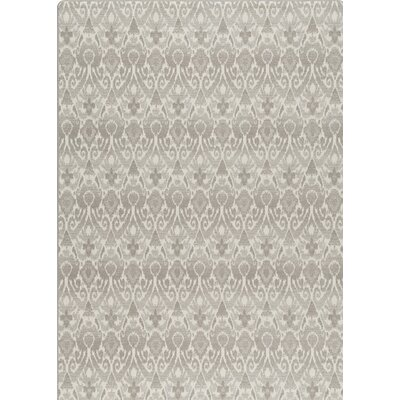 Imagine Green/Gray Area Rug Rug Size: Rectangle 54 x 78