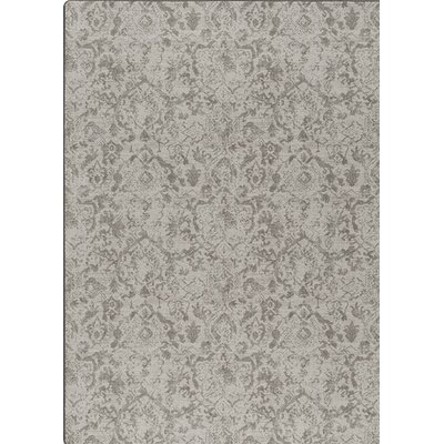 Imagine Gray Area Rug Rug Size: 310 x 54