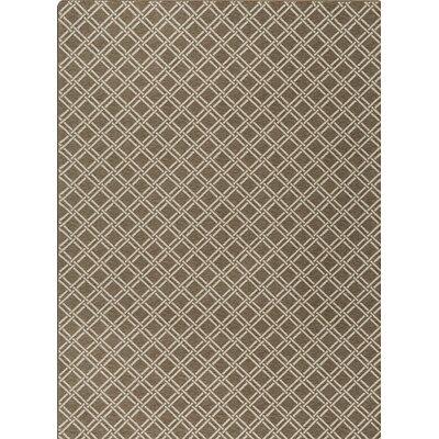 Imagine Brown/Gray Area Rug Rug Size: Rectangle 28 x 310