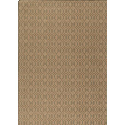 Imagine Brown Area Rug Rug Size: Runner 21 x 78
