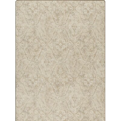 Imagine Brown Area Rug Rug Size: 54 x 78