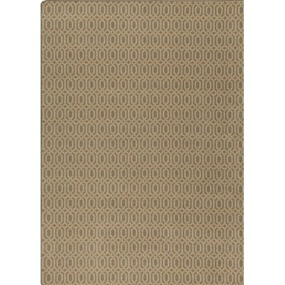 Imagine Green Area Rug Rug Size: Rectangle 54 x 78