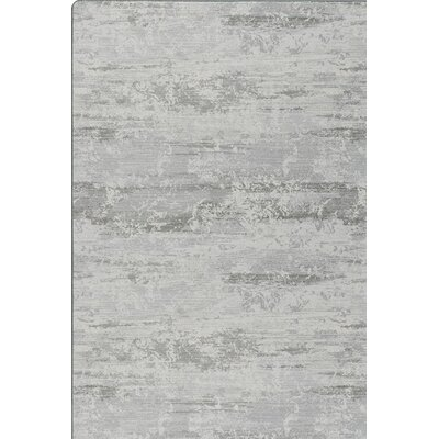 Imagine Gray Area Rug Rug Size: Runner 21 x 78