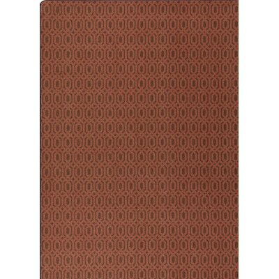 Imagine Brown  Area Rug Rug Size: 28 x 310