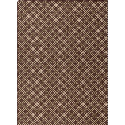 Imagine Brown Area Rug Rug Size: Rectangle 54 x 78
