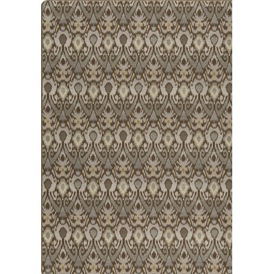 Imagine Gray Area Rug Rug Size: Rectangle 5'4