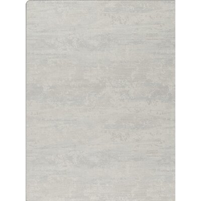 Imagine Gray Area Rug Rug Size: Rectangle 54 x 78