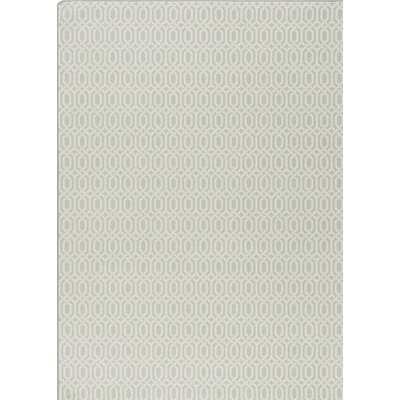 Imagine Green Area Rug Rug Size: 310 x 54