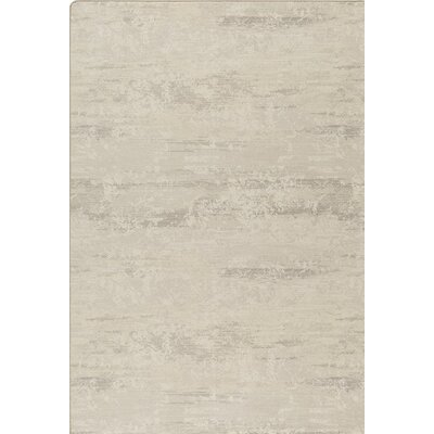 Imagine Gray Area Rug Rug Size: 28 x 310