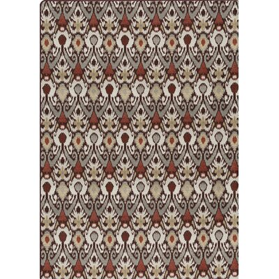 Imagine Gray/Brown  Area Rug Rug Size: 78 x 109