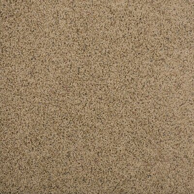 "Milliken Legato Touch 19.7"" x 19.7"" Carpet Tile in Tradewinds at Sears.com"