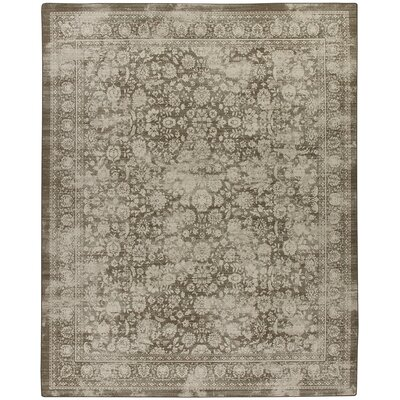 Abba Shaded Khaki Area Rug Rug Size: 109 x 132