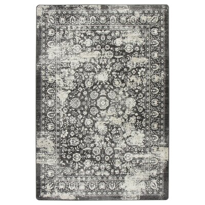 Abba Onyx Wash Area Rug Rug Size: Rectangle 54 x 78