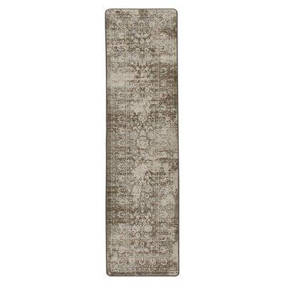 Abba Shaded Khaki Area Rug Rug Size: Runner 21 x 78