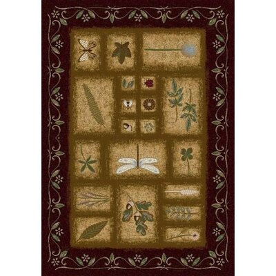 Signature Meadow Dark Chocolate Area Rug Rug Size: Oval 54 x 78