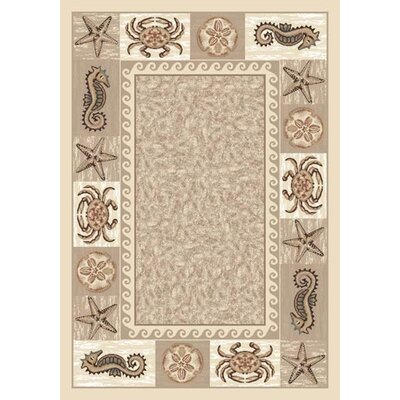Signature Sea Life Opal Area Rug Rug Size: Oval 54 x 78