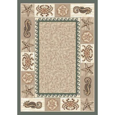 Signature Sea Life Light Aqua Area Rug Rug Size: Oval 5'4