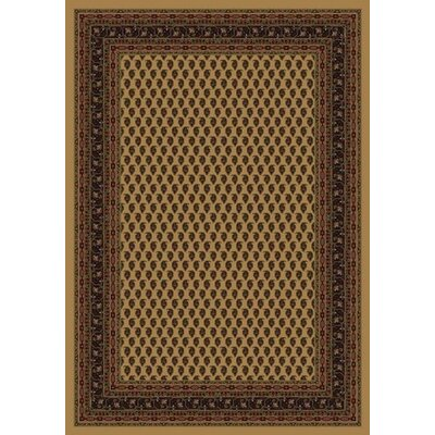 Innovation Maize Serabend Area Rug Rug Size: Round 77