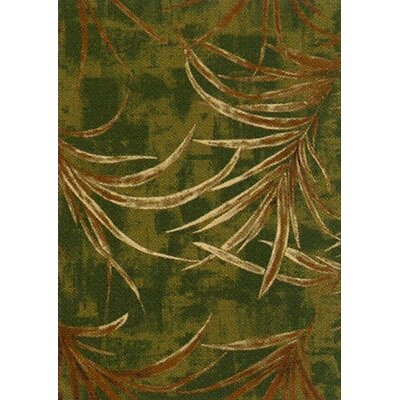Pastiche Rain Forest Deep Olive Area Rug Rug Size: Rectangle 3'10