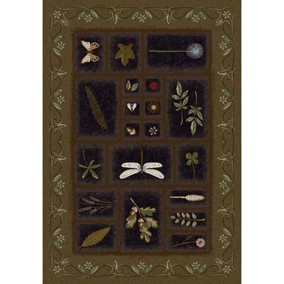 Signature Meadow Onyx Oregano Area Rug Rug Size: 109 x 132