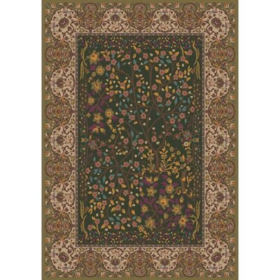 Pastiche Kashmiran Balsa Dried Herb Green Area Rug Rug Size: Rectangle 109 x 132