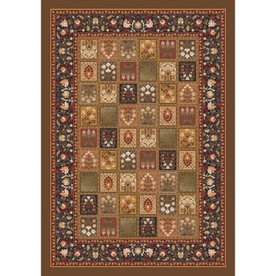 Pastiche Kashmiran Pristina Nutshell Brown Area Rug Rug Size: Rectangle 78 x 109