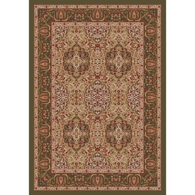 Pastiche Kashmiran Samarra Deep Olive Area Rug Rug Size: Rectangle 109 x 132