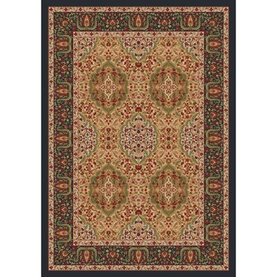 Pastiche Kashmiran Samarra Harvest Ebony Area Rug Rug Size: Rectangle 78 x 109