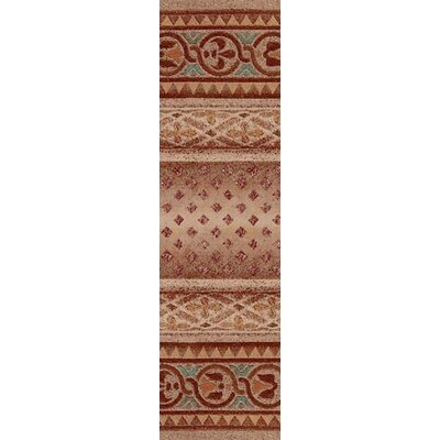 Signature Mohavi Coral Area Rug Rug Size: Rectangle 21 x 78