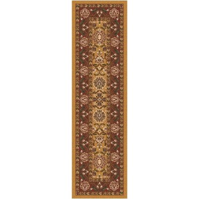 Pastiche Ababan Spice Gold Contemporary Runner Rug Size: 21 x 78