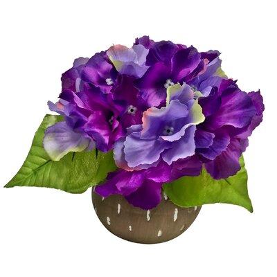 Korina Hydrangea Centerpiece in Bud Vase