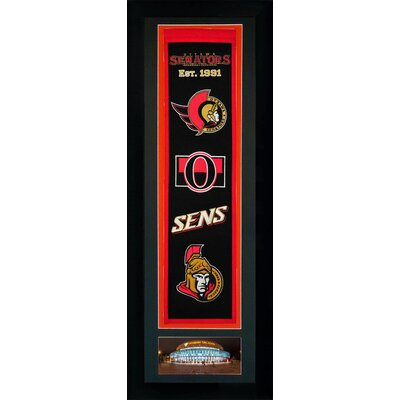 Framed Graphic Art Team: Ottawa Senators 15960U