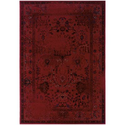 Raiden Red Area Rug Rug Size: Rectangle 53 x 76