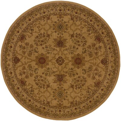 Barrows Beige/Red Area Rug Rug Size: Rectangle 310 x 55