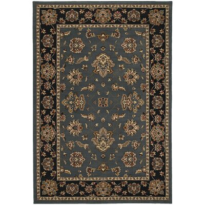 Shelburne Floral Blue/Black Area Rug Rug Size: Rectangle 53 x 79