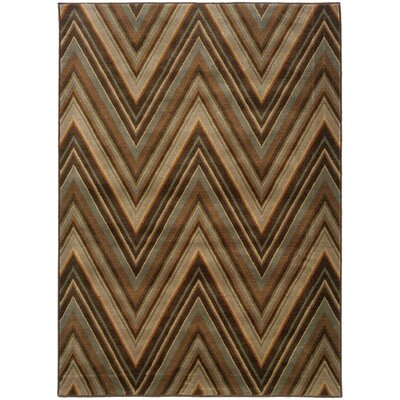 Calhoun Brown/Blue Area Rug Rug Size: Runner 11 x 76