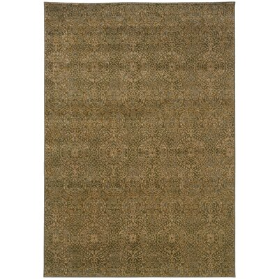 Arenzville Beige/Blue Area Rug Rug Size: Rectangle 5'3