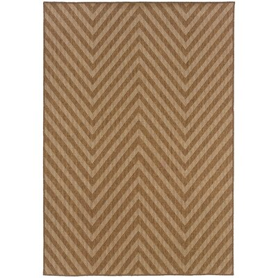 Stowe Hand-Woven Brown Indoor/Outdoor Area Rug Rug Size: Rectangle 53 x 76