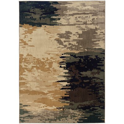 Fairhaven Gray/Beige Area Rug Rug Size: Rectangle 53 x 76