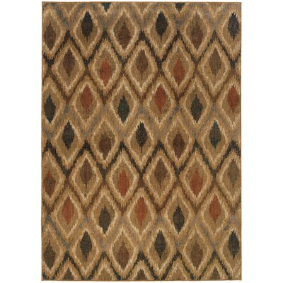 Johan Beige/Gray Area Rug Rug Size: Rectangle 53 x 76