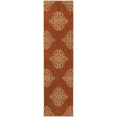 Alfreda Orange Area Rug Rug Size: Runner 11 x 76