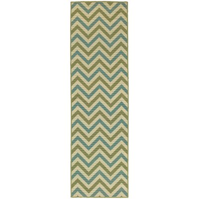 Heath Green/Blue Indoor/Outdoor Area Rug Rug Size: Runner 23 x 76