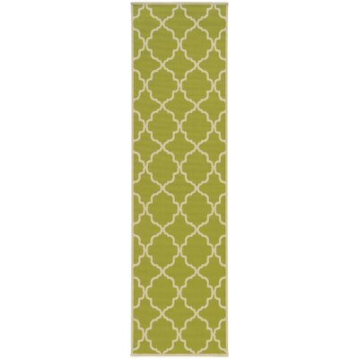 Heidy Green/Ivory Geometric Indoor/Outdoor Area Rug Rug Size: Runner 23 x 76