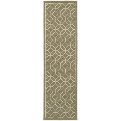 Liza Grey/Ivory Indoor/Outdoor Area Rug Rug Size: Runner 23 x 76