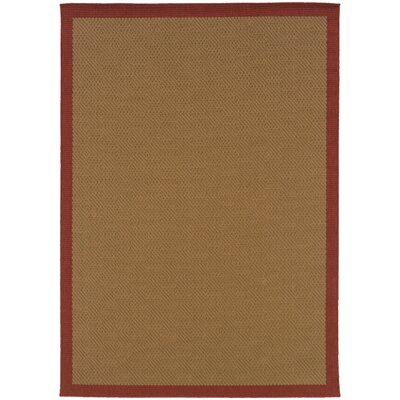 Goldenrod Brown Area Rug Rug Size: Rectangle 53 x 76