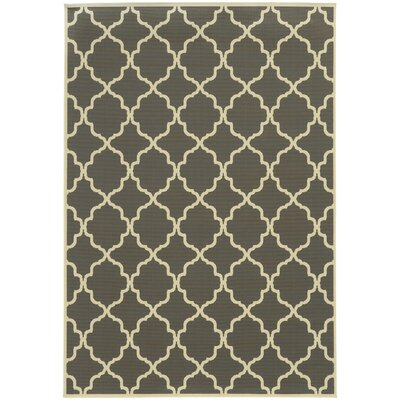 Heidy Geometric Gray/Ivory Stain Resistant Indoor/Outdoor Area Rug Rug Size: Rectangle 53 x 76