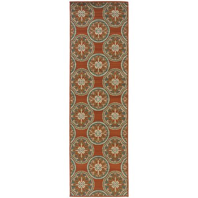 Newfield Orange/Ivory Indoor/Outdoor Area Rug Rug Size: Runner 23 x 76