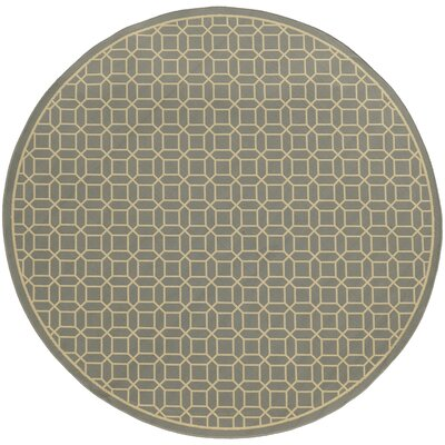 Liza Grey/Ivory Indoor/Outdoor Area Rug Rug Size: 3'7