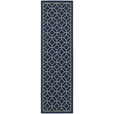 Liza Blue/Ivory Indoor/Outdoor Area Rug Rug Size: Runner 2'3