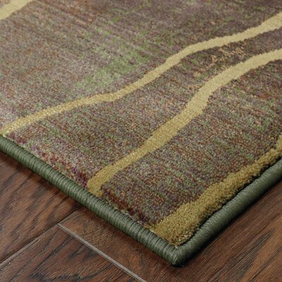 Burkhardt Area Rug Rug Size: Rectangle 23 x 45